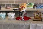 Trophies (including the crown)