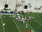 The Citadel offense - 1st qtr