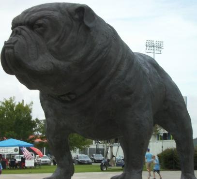 1 - Bronze Bulldog
