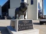 Bronze Bulldog